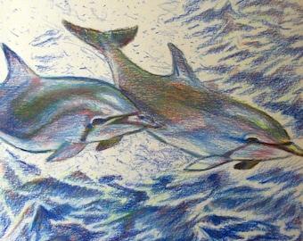 "Original 8x10""  Dolphin Canvas art Print #5 -: rdoward fine art"