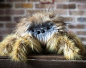 Medium Fluffy Penelope -Spider Plush - Soft Sculpture, Fiber Art, Art Toy, Plush, Halloween