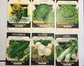 Vintage Deco Seed Packets Fredonia Deadstock Radish Cucumber Leek Garden Decor Set of 6 Card Seed Co. Set #4
