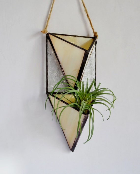 vertical garden wall plant holder terrarium air