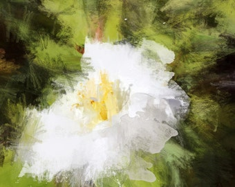 """Blossoms light in garden. Floral Painting, White Green Abstract Art Abstract Colorful Contemporary Canvas Art Print up to 72"""" by Irena Orlov"""