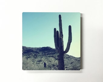 Camelback Cactus - Photograph of a Cactus in front of the Camelback Mountain on Metal