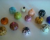 A Mixture of 13 Darling Decorative Different Color Pumpkins