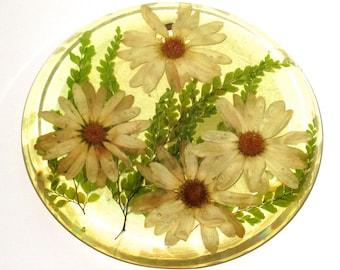 Vintage lucite trivet with flowers daisies marked Halvorson La Jolla