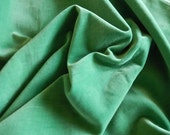 Vintage vibrant green velvet unused panel narrow width sewing projects pillows doll clothes