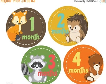 Sale Baby Milestone Stickers Baby Month Stickers Baby Boy Monthly Stickers Month Stickers Monthly Photo Stickers  Baby Shower Gift