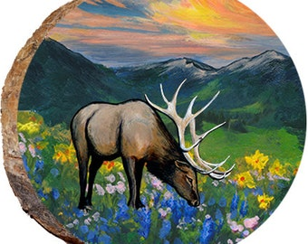 Elk Smelling the Flowers - DAE291