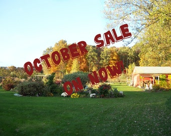 OCTOBER SALE On NoW!