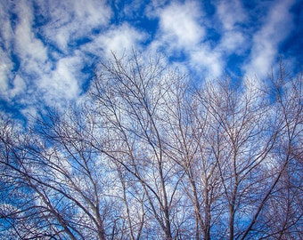 Clouds Print, Cloud Photo, Sky Picture, Cloud Picture, Sky Photography, Blue Sky Print, Clouds Picture, Sky Print, Cloud Photography