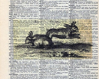 Vintage Illustration Printed on Antique Encyclopedia Page - Two Rabbits