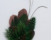 green & brown feather brooches