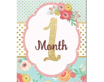 Monthly Baby Signs Photo Prop, Monthly Photos, Baby Month, Girl Baby Shower Gift, Baby Photo Prop, Baby's First Year Scrapbook BMSI045