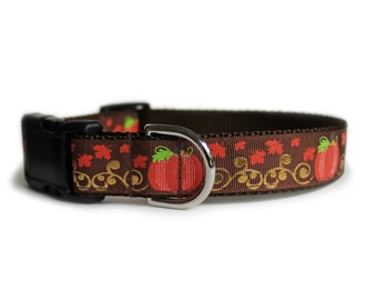 Fall Dog Collar with Pumpkins and Golden Vines, Thanksgiving Dog Collar, Leaves, Can Be Personalized, for Girl or Boy- Pumpkins