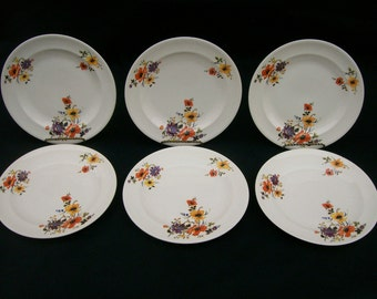 Limoges China USA set of 6 Plates LIA98 Bright Colorful Flowers