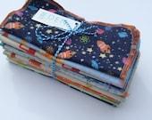 Cloth Wipes, 12 Reusable Family Cloth, Cloth Diaper wipes, set of 12