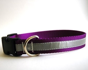 Reflective Dog Collar on Purple