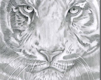 Terence Tiger Greeting Card
