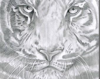 Terence Tiger Greeting Card - Wildlife, Safari, Wild Animal Card, Blank Inside