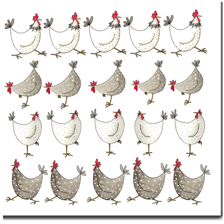 Poulet multi blanc carte de voeux carte danniversaire - Photos poules rigolotes ...