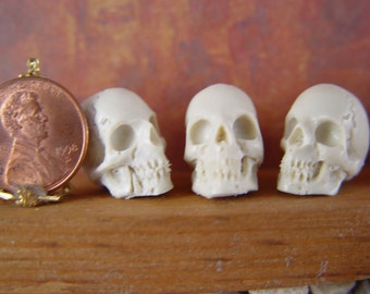 Dollhouse Miniature 1:12th Halloween Resin Skull for Witch, Wizard, Vampire, Harry Potter