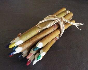 Crayons de bois de saule