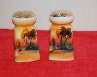 Collector salt and Pepper Shaker Set, Square, Ceramic Shaker Set, Fall Scene,