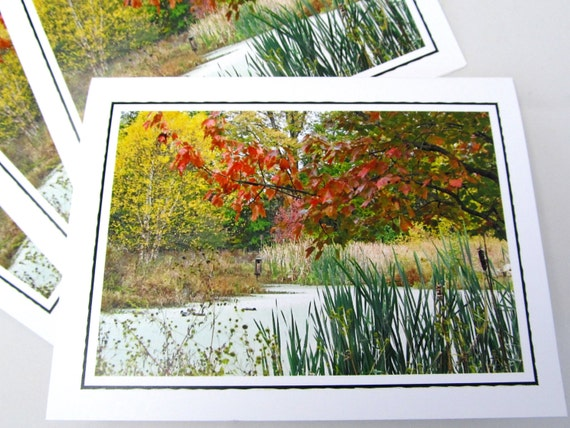 Photo Note Card Set - Set of Four Photo Cards - Autumn Pond - Set of 4 Blank Note Cards - Nature Photography - Gift Set - Bird Habitat