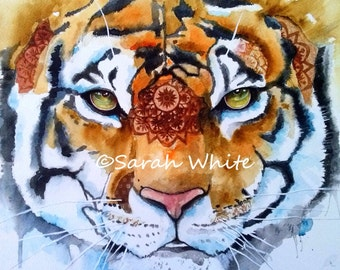 Indian Tiger Giclee Print