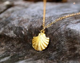 Golden Scallop Necklace 14k