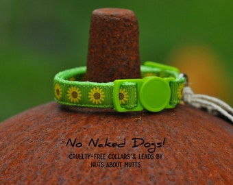 Sunflowers on Lime ribbon cat collar with breakaway safety buckle