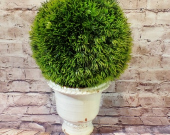 "Grass Ball Topiary ""Potted"" In a Distressed White  Ceramic Urn"