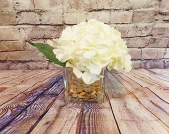 Premium Large Cream Hydrangea Bloom Set in a Thick and Heavy 4x4 Cube Vase with Acrylic Water