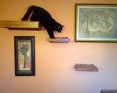 Set of Five   Four Floating Cat Shelves   One Floating Cat Bed   Cat Shelves   Cat Perch   Reclaimed Wood Shelves   Cat Furniture