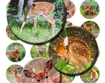 Fawn Baby Deer Woodland Animals Bambi Digital Images Collage Sheet 1.5 inch 38mm Circles INSTANT Download OC46