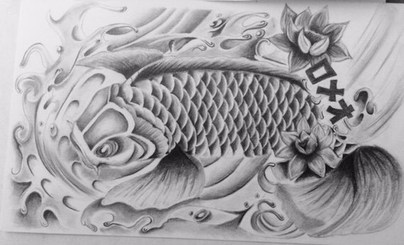 Grafito de peces koi lpiz dibujo grabado 11x 14