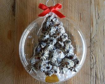 Opihi Shell Ornament - With Beach Glass Ornament -  Hawaiian Christmas Ornament - Individual