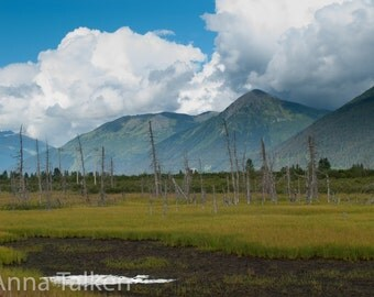 Alaskan Landscape Photograph