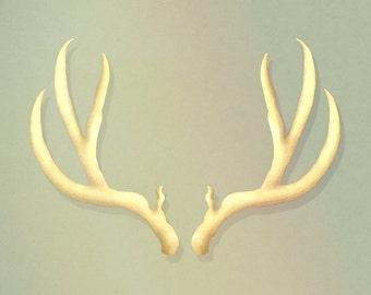 Antlers Print