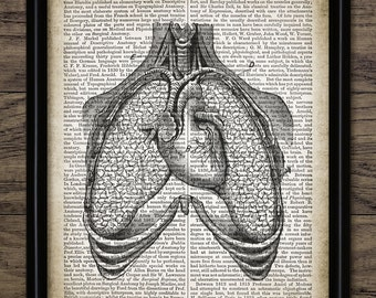 Vintage Human Heart And Lungs Print On Anatomy Dictionary Page Background - Medical Science - Single Print #1303 - INSTANT DOWNLOAD