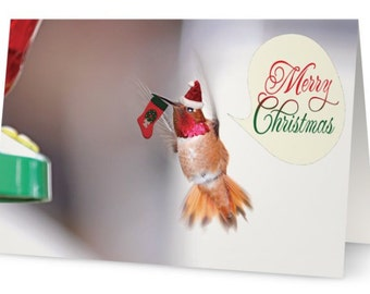 Hummingbird Card, Merry Christmas Card, Bird Christmas Cards, Humming Bird Card, Christmas Card Set, Funny Christmas Cards, Xmas Cards