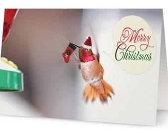 Hummingbird Card, Merry Christmas Card, Bird Christmas Cards, Humming Bird Card, Christmas Card Set, Funny Christmas Cards, Xmas Cards