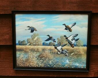 Mallard Ducks Print, Startled Flight Framed Print, Harry Curieux Adamson Waterfowl Print, Wildlife Painter, Lodge Decor