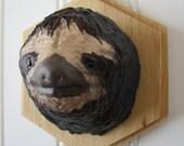 Sloth!  - Mounted Animal Head