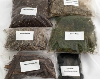 Terrarium/Fairy Garden Kit - Create Your Own Living Terrarium