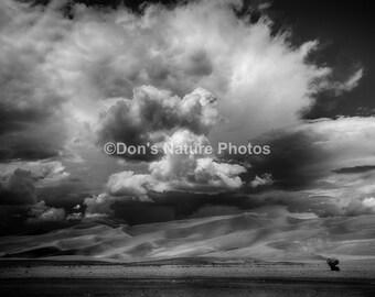 Great Sand Dunes National Park, Colorado. Printed on Kodak Endura Metallic Paper. #2068