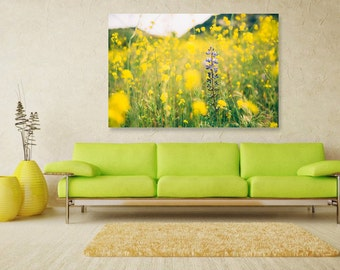 Yellow Purple Wildflower Fields, Spring Flowers, Fine Art Flower Print, Nature Photography, Wallart Photo Printable, Home Office Decor