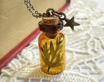Mini Glass Bottle Leaf Necklace - Green - Star - Cypress - Real - Woodland - Mori Girl - Fern Leaf - Terrarium - brown - Vintage