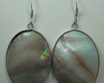 Abalone Shell Earrings # 429