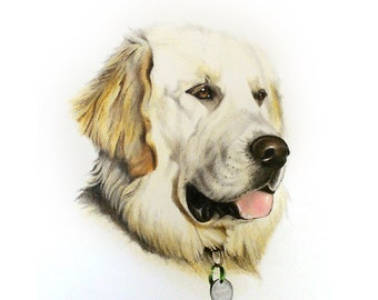 Pet Portrait, Custom Dog Portrait