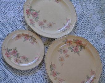 Edwin Knowles Alice Annglow Pattern Plates, 2 Dinner Plates, 1 Salad Plate